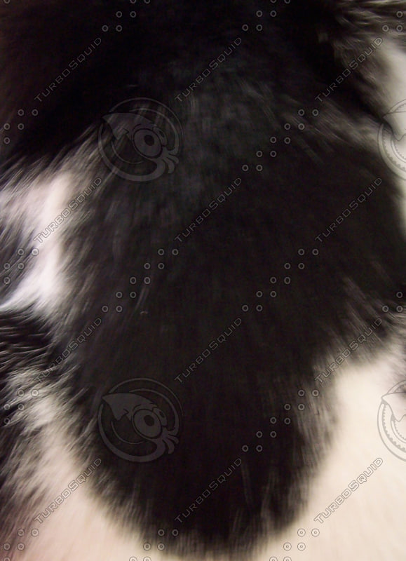 animalfur.jpg
