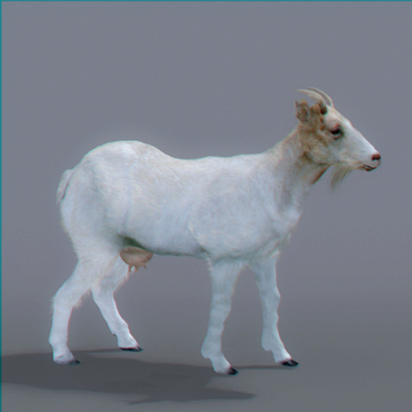 3ds max goat polys - Rigged Goat... by NONECG