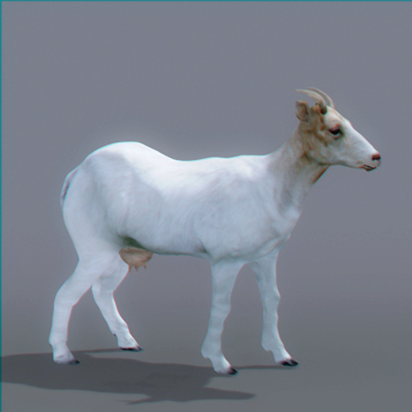 goat polys 3d model - Goat... by NONECG