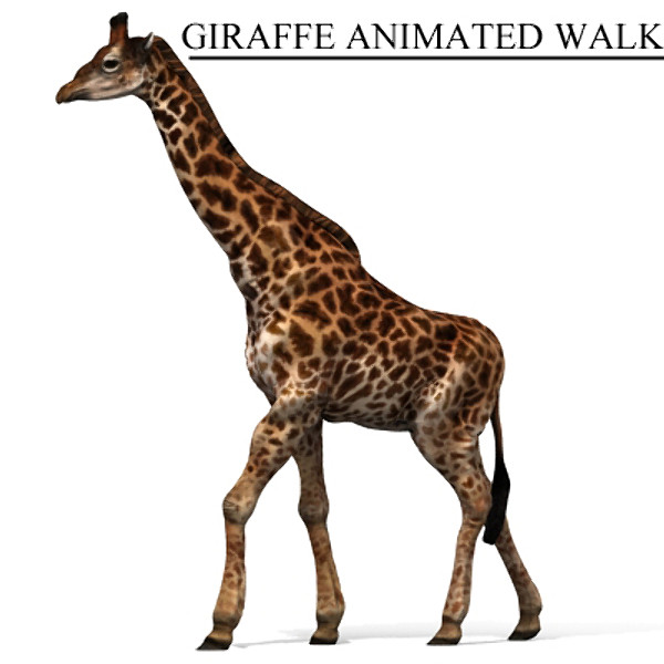 giraffe max - giraffe_max.zip... by David Penfound