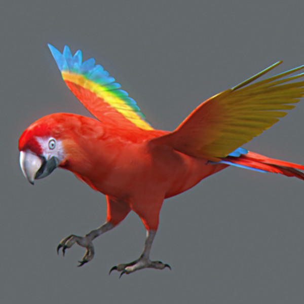 Animated Parrots Pack
