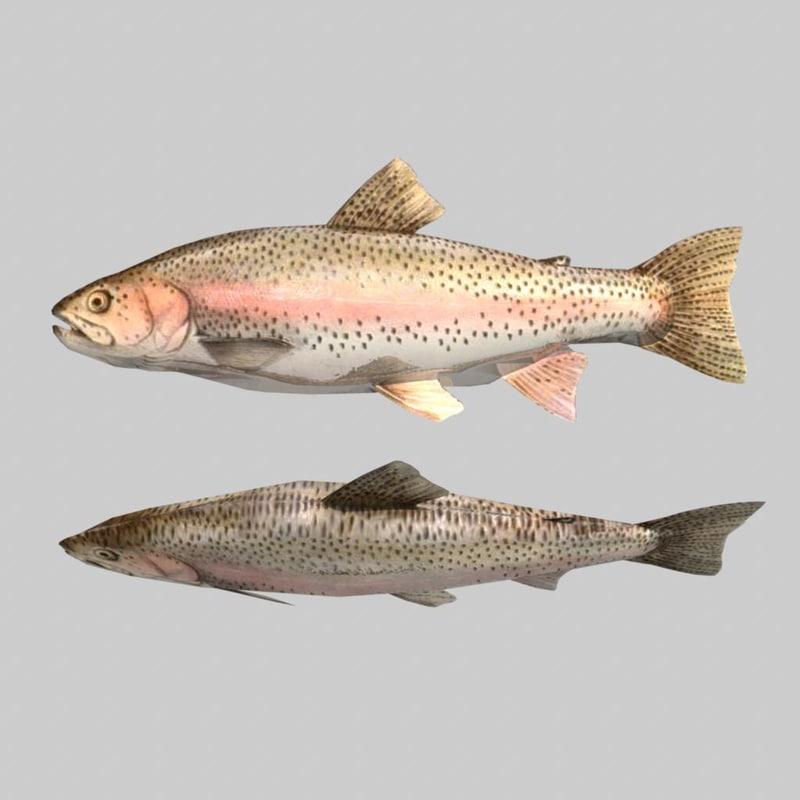 fish.2.jpg