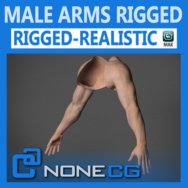 Adult Male Arms and Hands Rigged