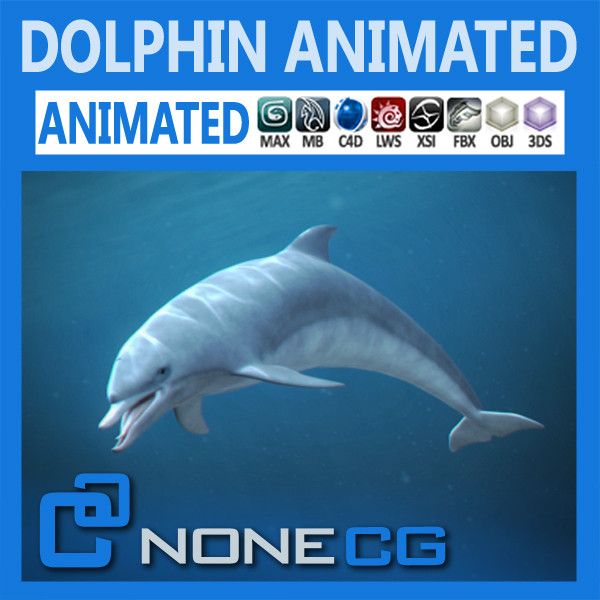 swim animation dolphin bottlenose 3d model - Animated Bottlenose Dolphin... by NONECG