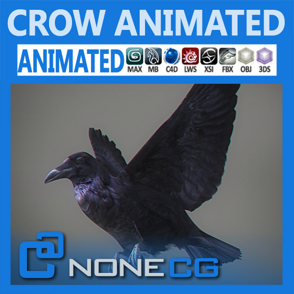 Animated Crow 3D Models