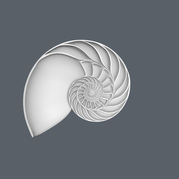 3d nautilus shell cut - Nautilus shell cut... by legendar1