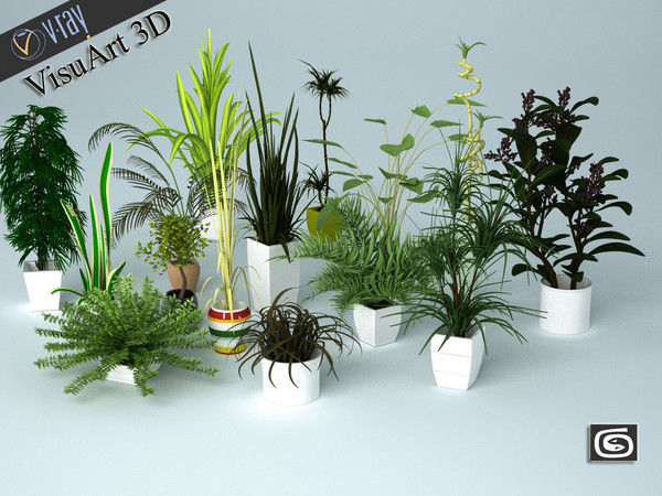 plant interior 3d model - plants collection... by VisuArt3D