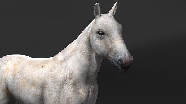 horse rigging 3d model - Horse(1)... by VIS3D