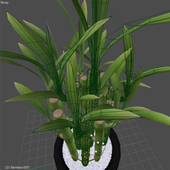 3d model of lucky bamboo - Lucky Bamboo... by robstranges
