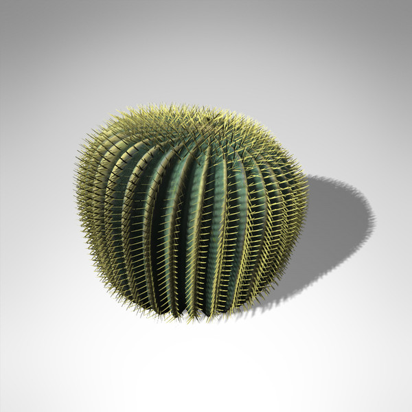 3d max xfrogplants barrel cactus plant - XfrogPlants Barrel Cactus... by xfrog