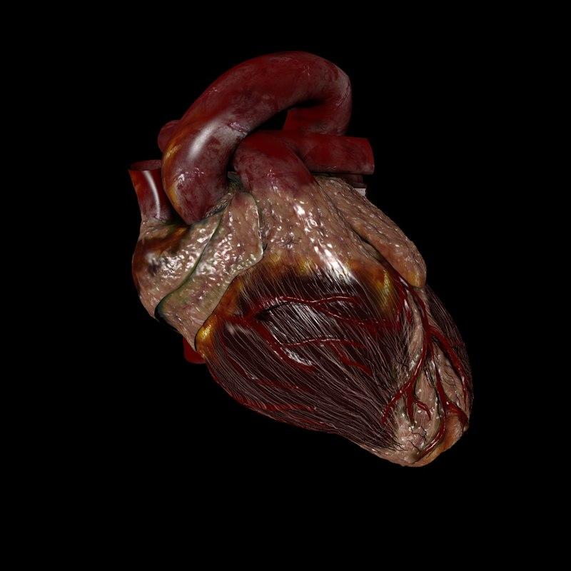 Beating Heart-MainImage-01b.jpg