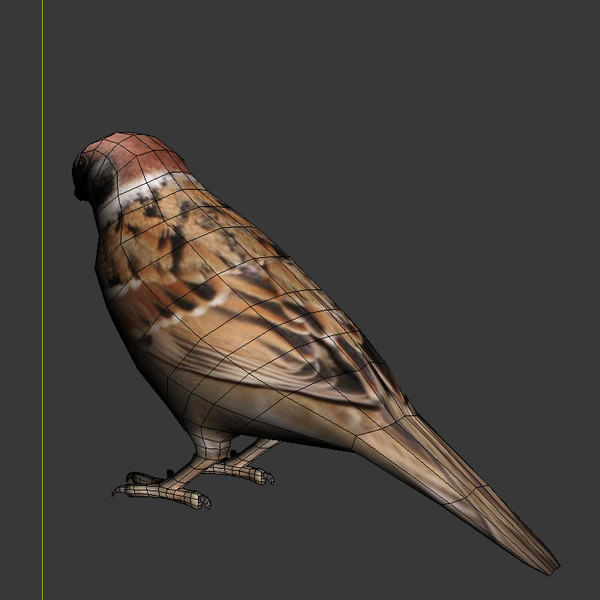 3ds max sparrow - Sparrow... by GurnisLV