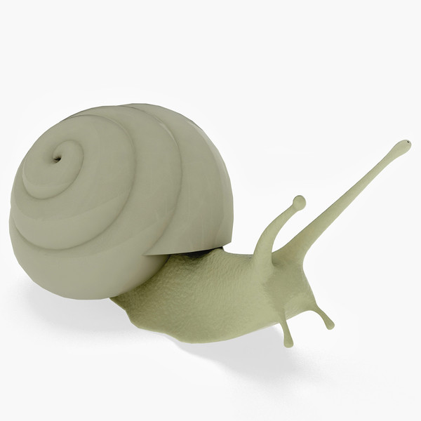 snail 3d max - Snail... by parhelios