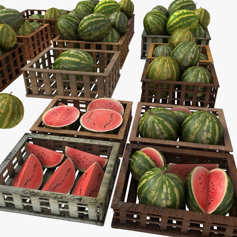 Melon Fruit Crates Cases Market Store Shop Convenience General Grocery Greengrocery Detail Prop Fair Plantation Jungle South Plant Garden Greenhouse Watermelon