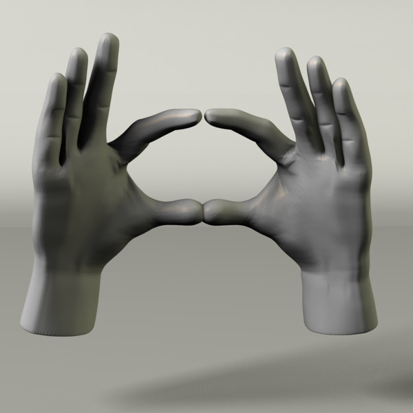 Fully Rigged Set of Hands 3D Models
