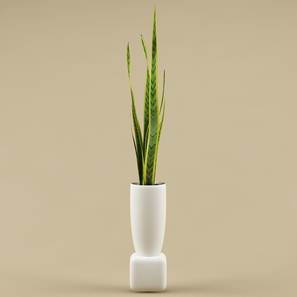 plant flowerpot 3d model - plant with flowerpot_11... by bihoreanul