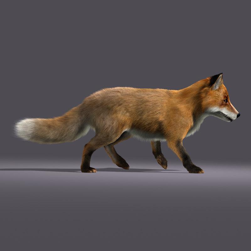 Fox (ANIMATED) (FUR)