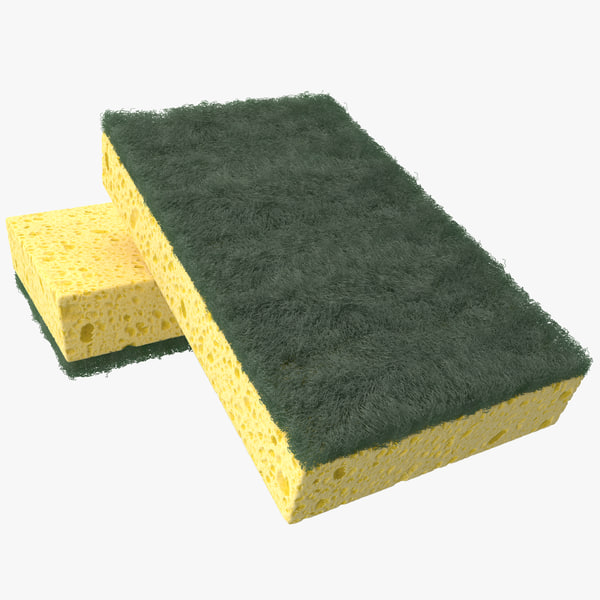 Sponge 3D Models