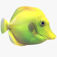 fish 3d models