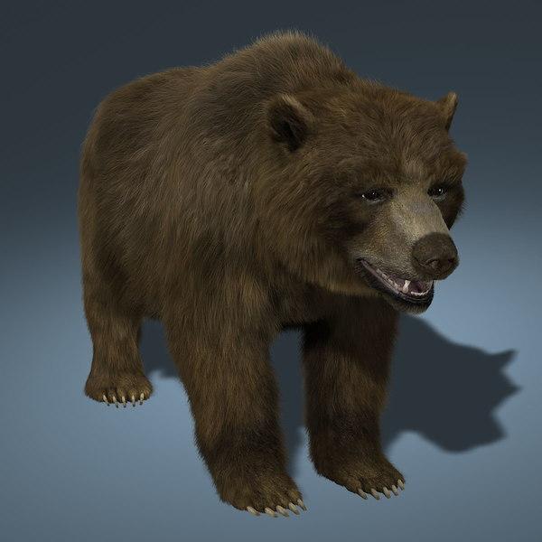Bear (FUR) 3D Models