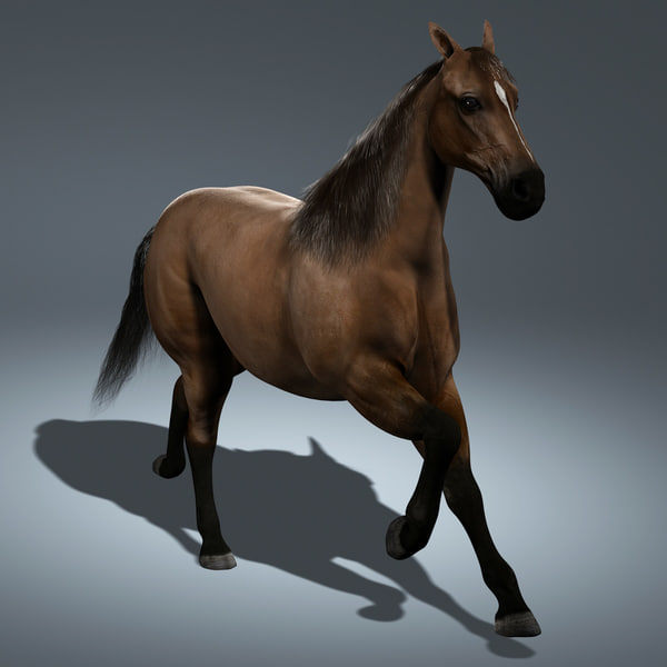Horse (ANIMATED) 3D Models