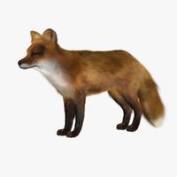 fox 3d models