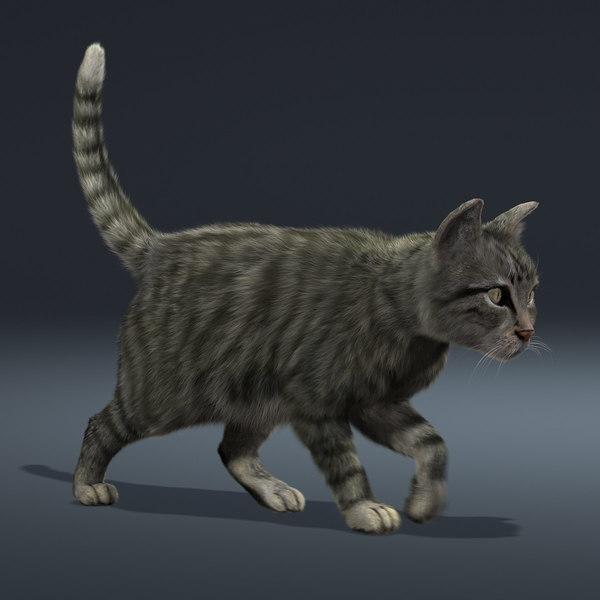 Cat S Stl Model