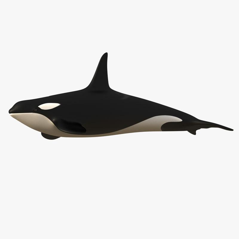 Orca-00-Signature.jpg