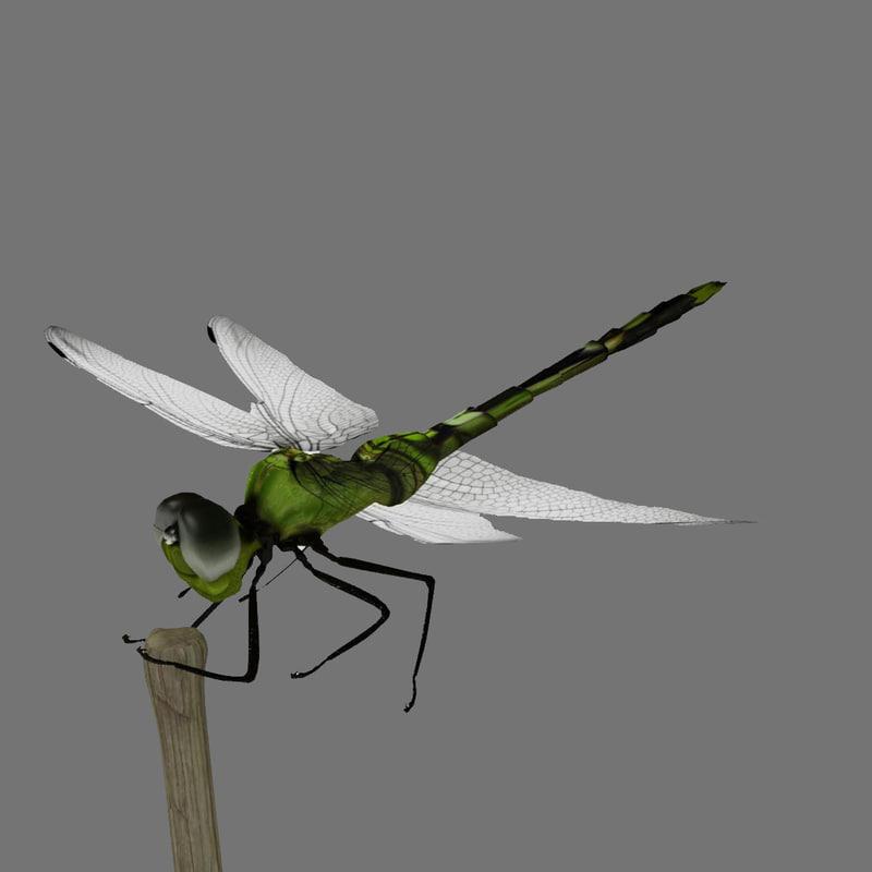Dragonfly_render_01.jpg
