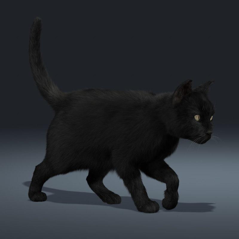 pin 3d black cat - photo #29