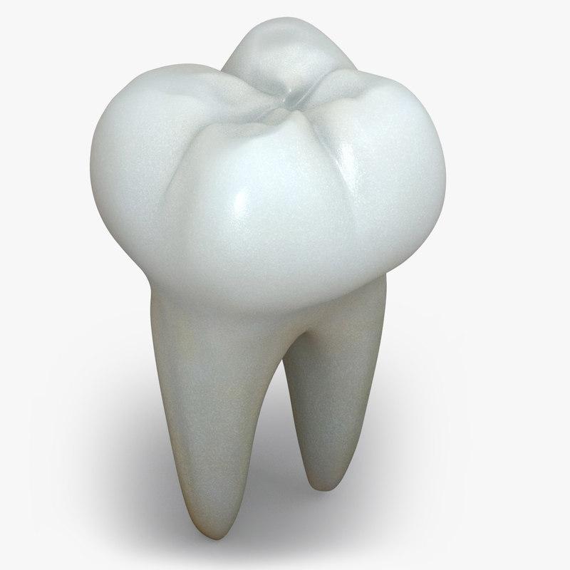 teeth_01b.jpg