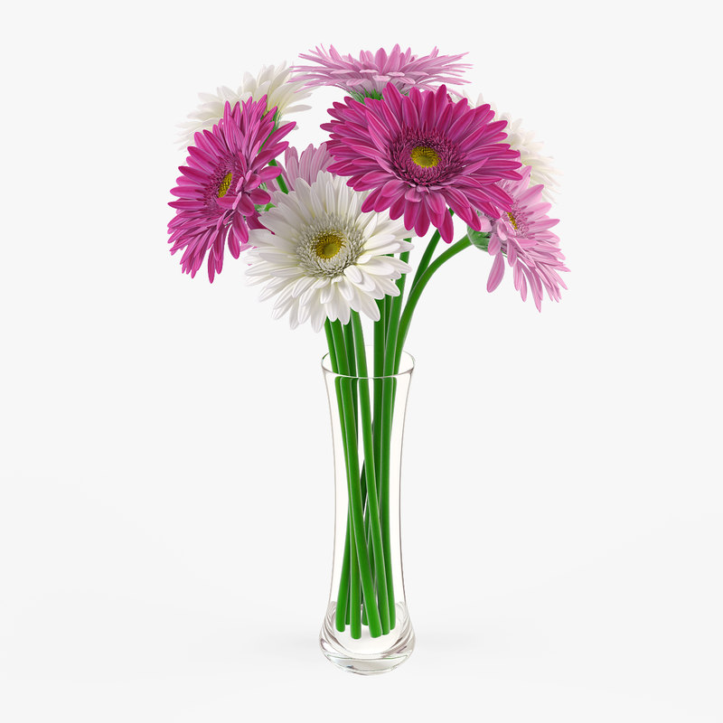 Gerbera Daisy Arrangements Vases: 3d Vase Gerbera Flowers