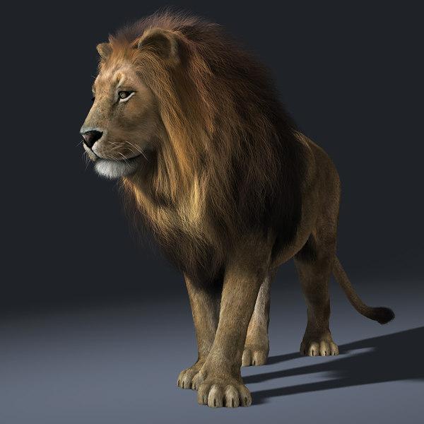 3d lion 1280 - photo #46