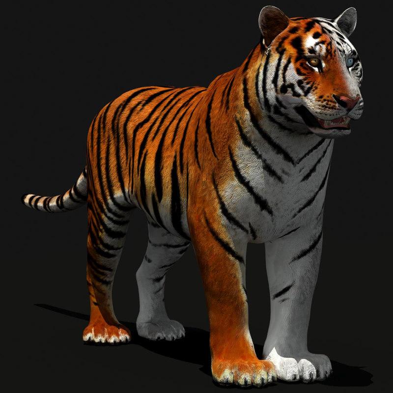 Tiger_Dark-00.jpg