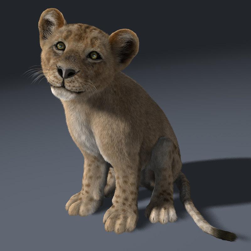 Lion Cub (RIGGED) (FUR)