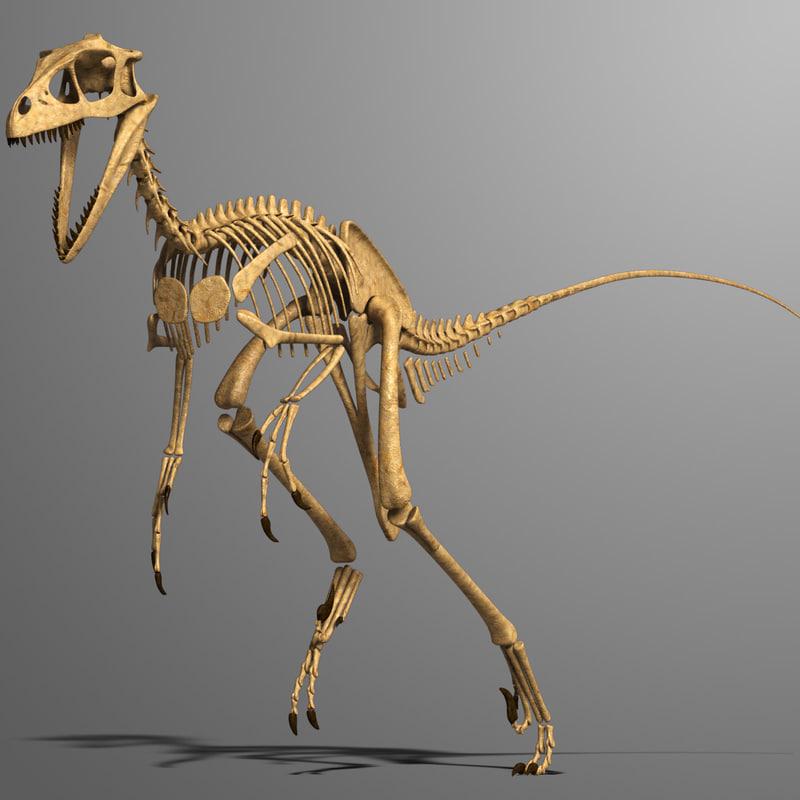 Dromaeosaurus_00.jpg