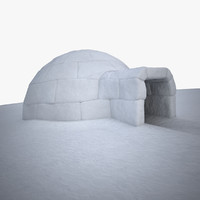 igloo 3D models