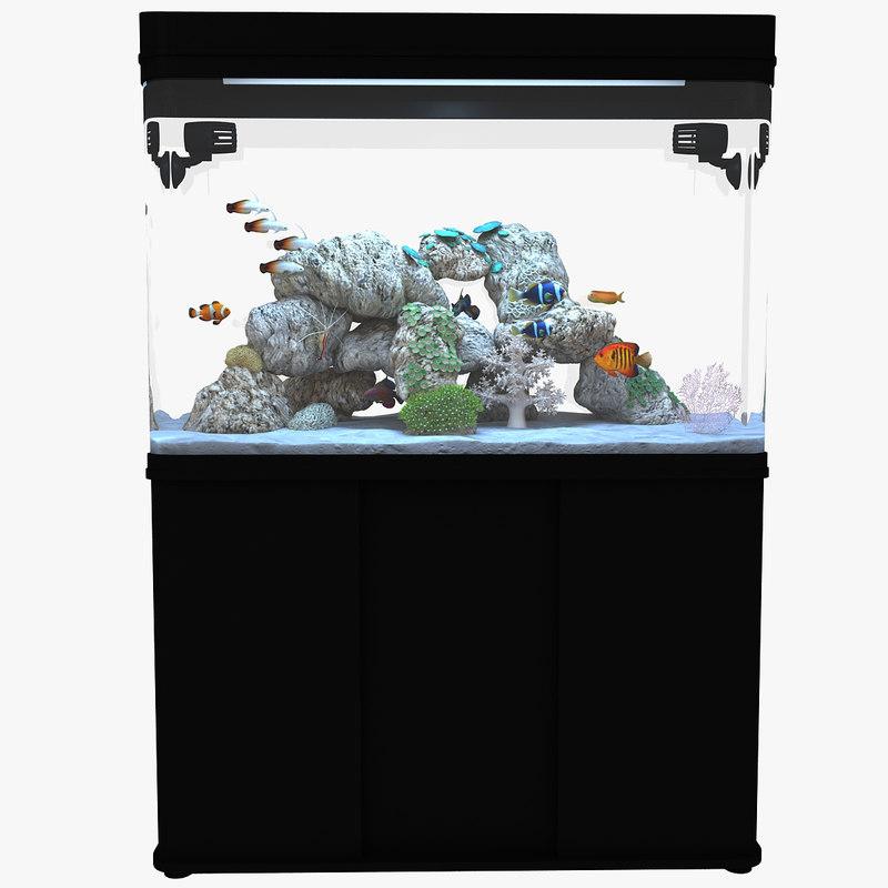 aquarium2 R19white.jpg