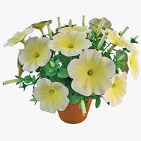 planter 3D models