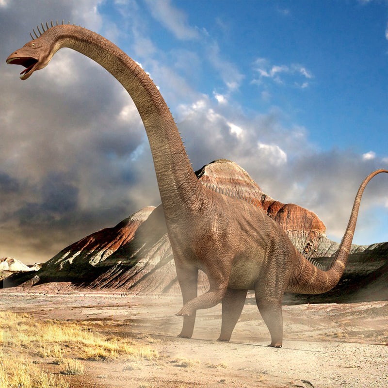 Diplodocus Dinosaur (Rigged)