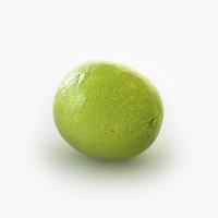 lime 3D models