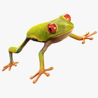 Tree Frog 3D models