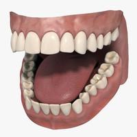 tooth 3D models