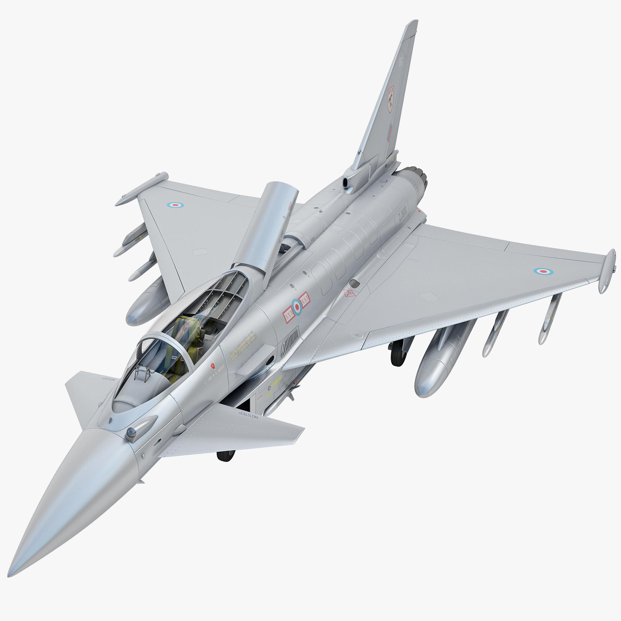 Eurofighter Typhoon EF2000 Rigged_1.jpg