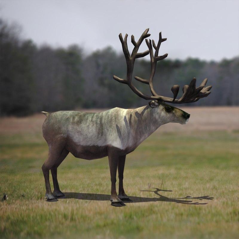 reindeer_color_2.png
