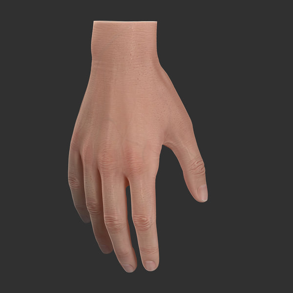 Basic Hand Rigged 3D Models