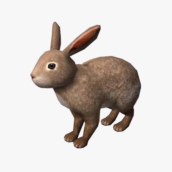 Rabbit00.jpg