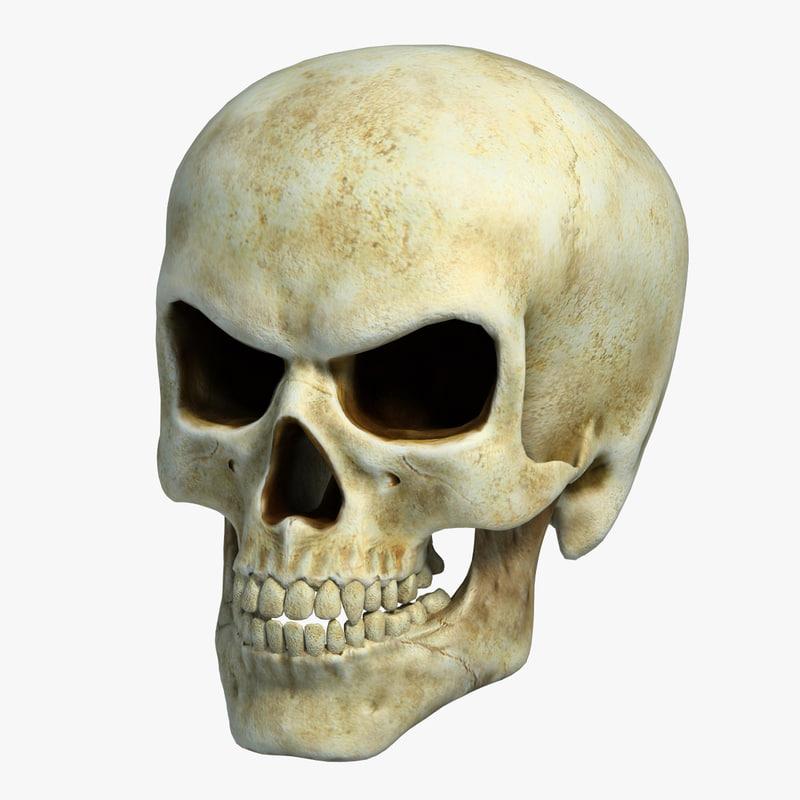 Skull3_CheckMate-1.jpg