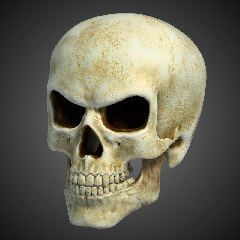 Skull3_CheckMate-2.jpg