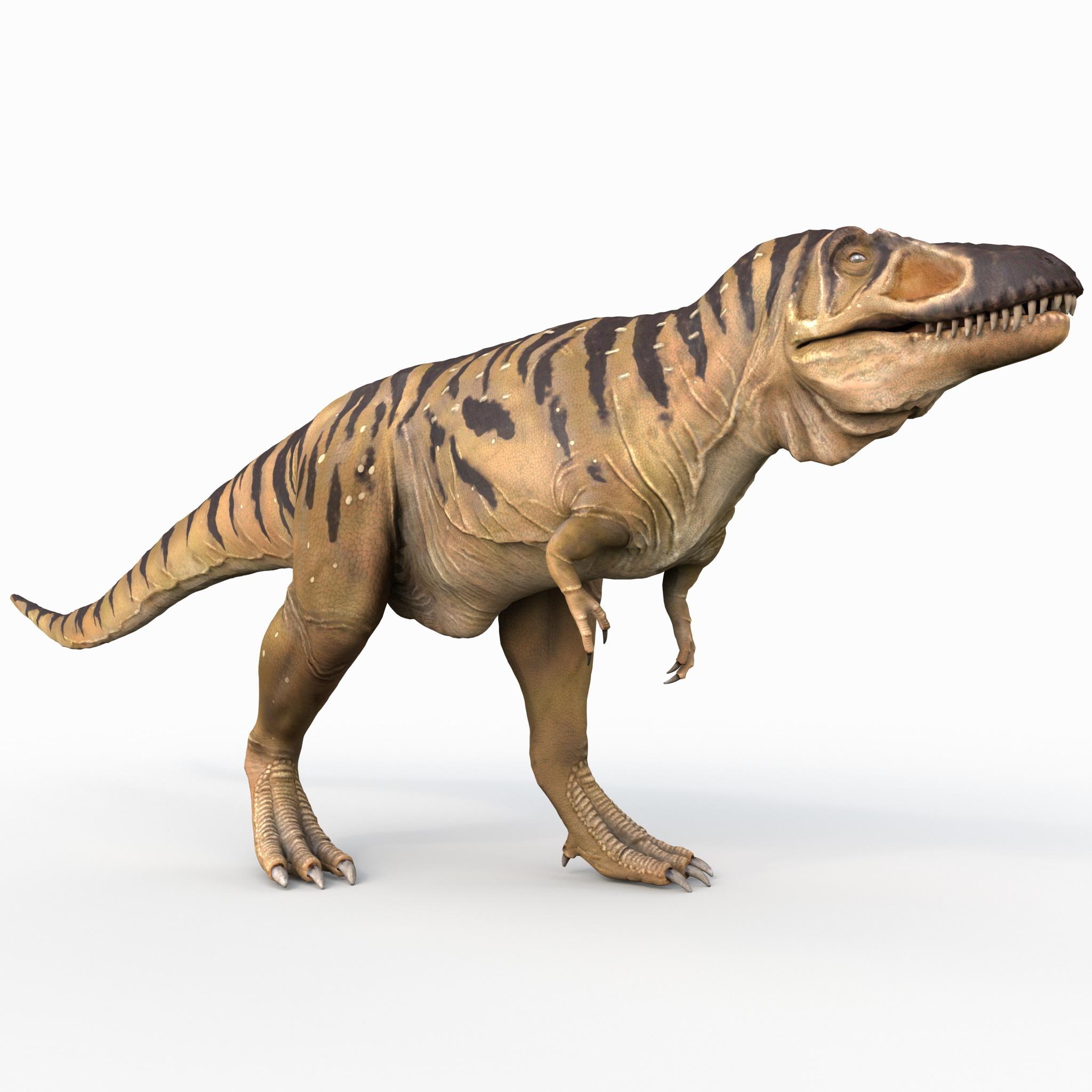 Tarbosaurus Pose 1_2.jpg